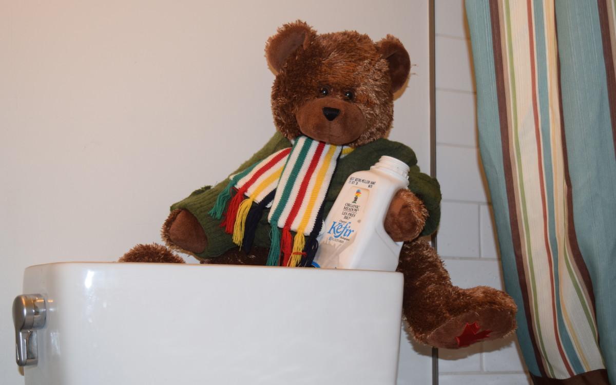 Rupert found Kefir in my toilet.